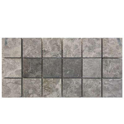 Tumbled 2 x 2 Natural Stone Mosaic Tile in Marine Fantasy