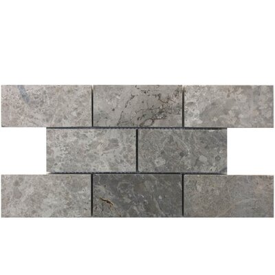 Tumbled 2 x 4 Natural Stone Mosaic Tile in Marine Fantasy