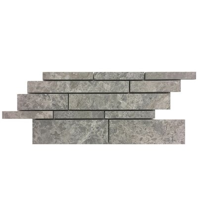 Strips Natural Stone Mosaic Tile in Marine Fantasy