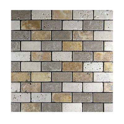 Tumbled 1 x 2 Natural Stone Mosaic Tile in Gold/Noce