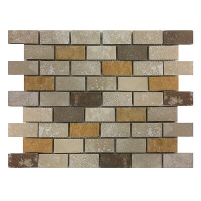 Honed 1 x 2 Natural Stone Mosaic Tile in Gold/Noce