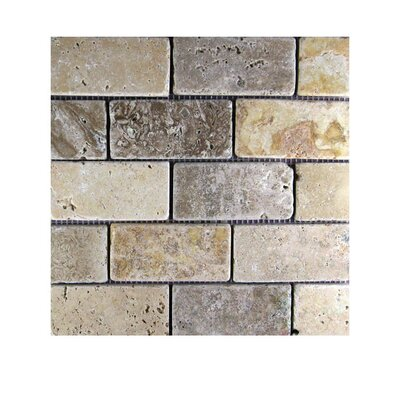 Tumbled 2 x 4 Natural Stone Mosaic Tile in Gold/Noce