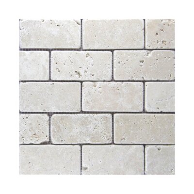 Tumbled 2 x 4 Natural Stone Mosaic Tile in Gray