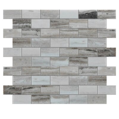 Polished 1 x 2 Natural Stone Mosaic Tile in Gray