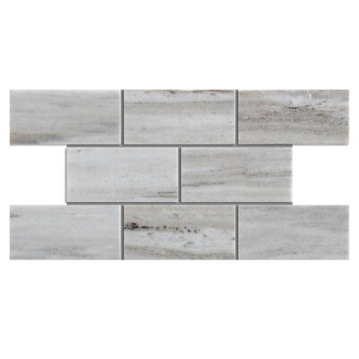 Polished 2 x 4 Natural Stone Mosaic Tile in Palissandro