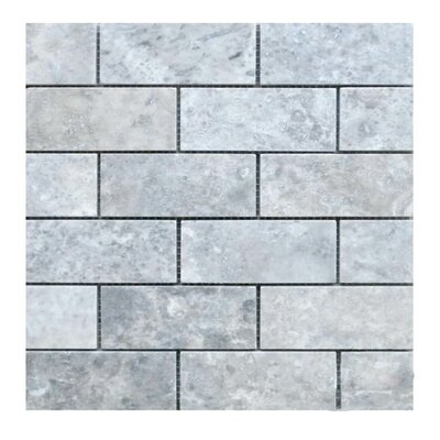 Honed 2 x 4 Natural Stone Mosaic Tile in Silver