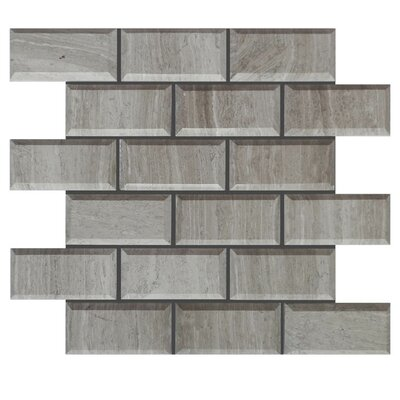 Pillow Edge Polished 2 x 4 Natural Stone Mosaic Tile in Gray