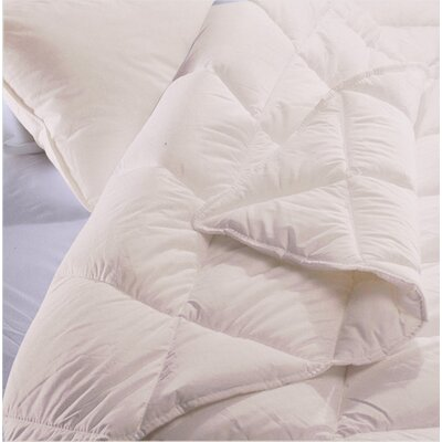 100% Cotton 4 Piece Sheet Set Color: Ivory, Size: Twin
