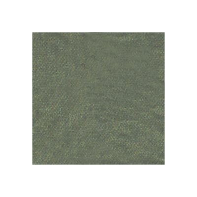 Chambray Cotton Throw Pillow Color: Green