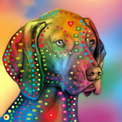 'German Shorthair Pointer' Graphic Art Print on Canvas Size: 18