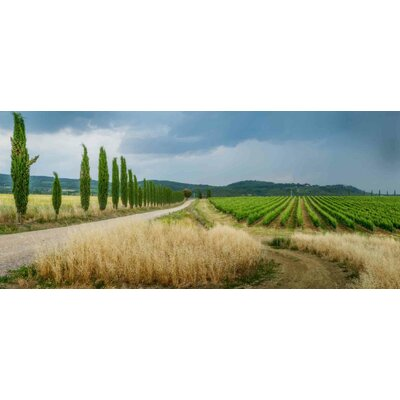 'Montalcino; Italy' Photographic Print on Canvas Size: 16