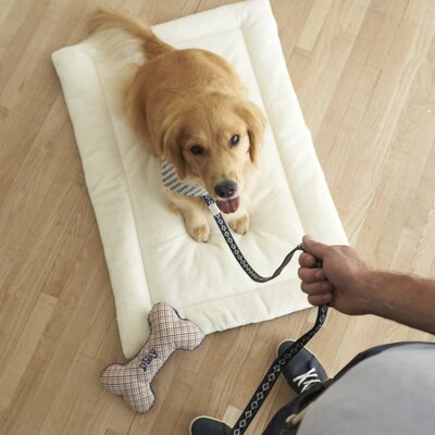 Adventure Crate Dog Mat Size: Medium (30 W x 19 D)
