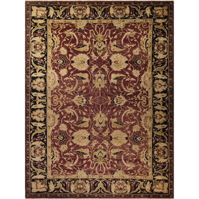 Xenos Hand-Knotted Wool Purple/Black Area Rug