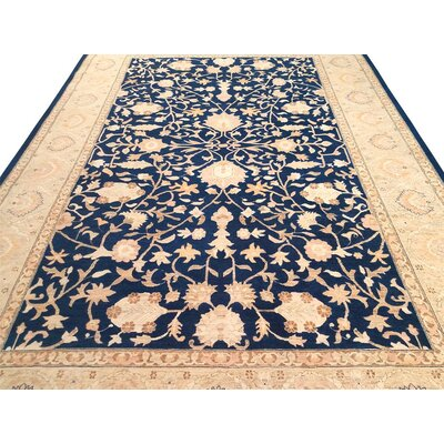Xenos Transitional Hand-Knotted Wool Blue/Gold Area Rug