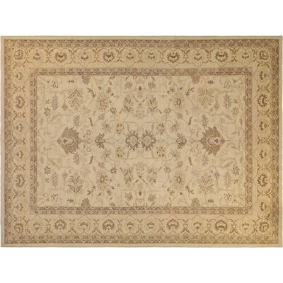 Xenos Traditional Hand-Knotted Wool Ivory Area Rug