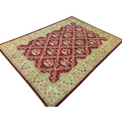 Xenos Hand-Knotted Wool Red/Light Tan Area Rug