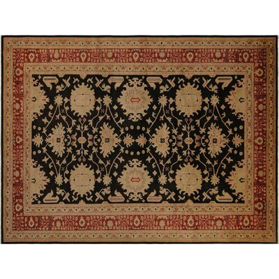 Badham Hand-Knotted Wool Black/Red Area Rug