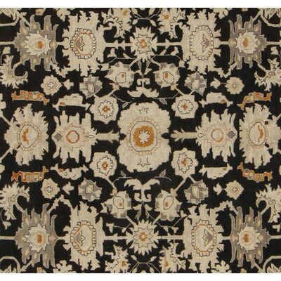 Xenos Hand-Knotted Wool Black/Rust Area Rug
