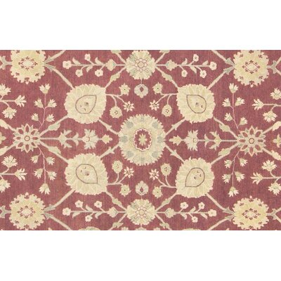 Xenos Oriental Hand-Knotted Wool Brown Area Rug