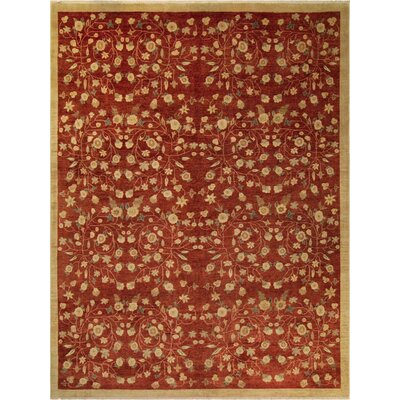 Xenos Hand-Knotted Rectangle Wool Red/Gold Area Rug