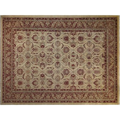 Xenos Hand-Knotted Wool Ivory/Light Brown Area Rug