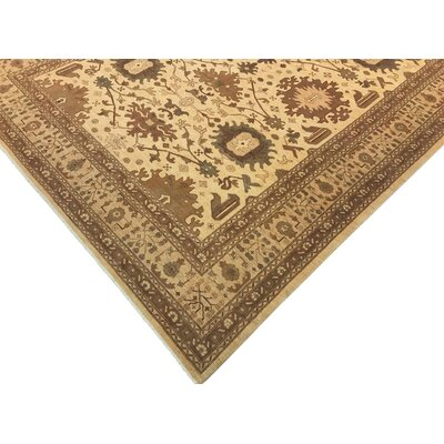 Xenos Transitional Hand-Knotted Wool Ivory/Tan Area Rug