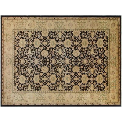 Xenos Hand-Knotted Rectangle Wool Black/Gold Area Rug