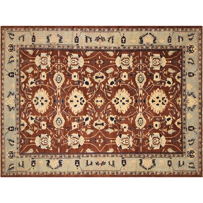 Xenos Hand-Knotted Wool Brown/Light Blue Area Rug
