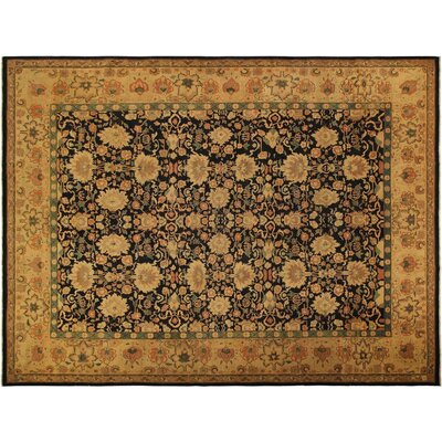 Xenos Hand-Knotted Wool Black/Tan Area Rug