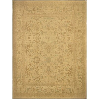 Xenos Hand-Knotted Rectangle Wool Ivory Area Rug
