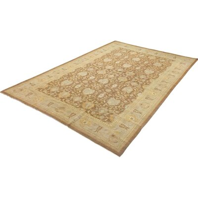 Xenos Transitional Hand-Knotted Wool Brown/Tan Area Rug