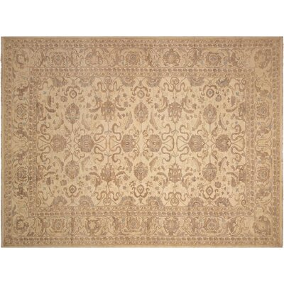 Xenos Oriental Hand-Knotted Wool Ivory Area Rug