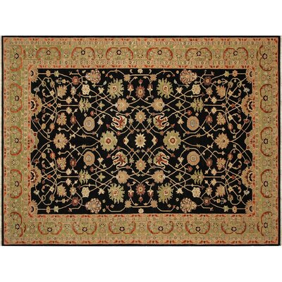 Badham Hand-Knotted Wool Black/Light Green Area Rug