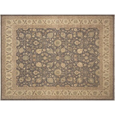 Xenos Hand-Knotted Rectangle Wool Gray/Ivory Area Rug