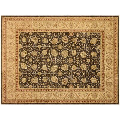 Xenos Hand-Knotted Wool Brown/Ivory Area Rug
