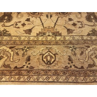 Xenos Traditional Hand-Knotted Rectangle Wool Tan Indoor Area Rug