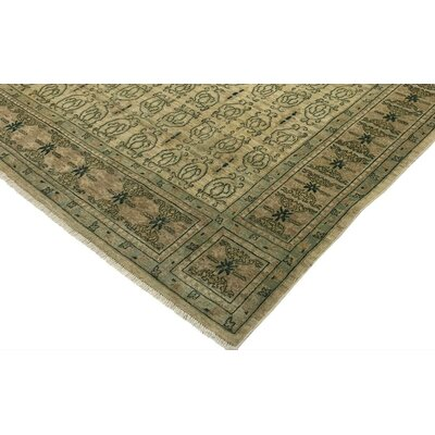 Badham Hand-Knotted Wool Light Tan/Green Area Rug