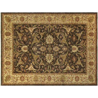 Xenos Hand-Knotted Rectangle Wool Brown/Light Tan Area Rug