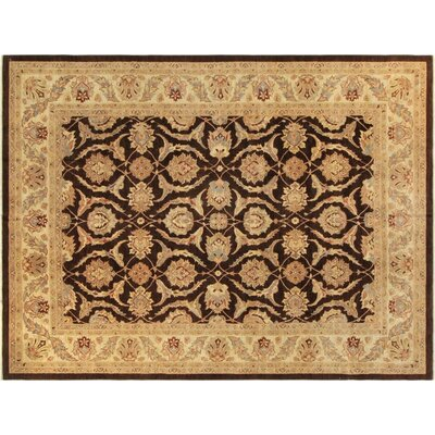 Xenos Hand-Knotted Rectangle Wool Brown/Ivory Area Rug