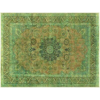 Badillo Hand-Knotted Wool Light Brown/Light Green Area Rug