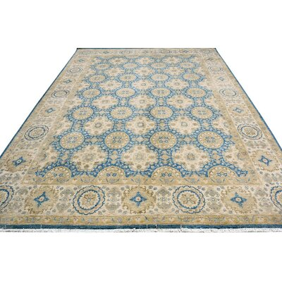 Xenos Hand-Knotted Wool Blue/Beige Area Rug