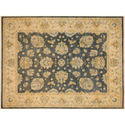 Xenos Traditional Hand-Knotted Wool Gray/Tan Area Rug