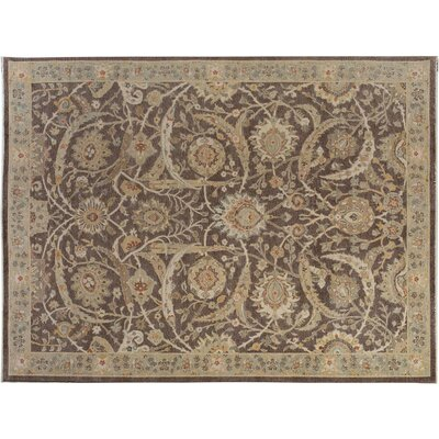 Xenos Transitional Hand-Knotted Wool Brown/Gray Area Rug