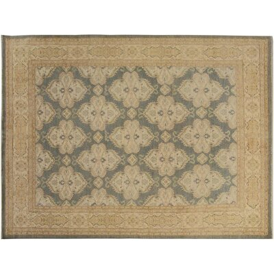 Xenos Transitional Hand-Knotted Rectangle Wool Gray/Ivory Indoor Area Rug