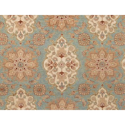 Xenos Hand-Knotted Wool Light Blue/Tan Area Rug