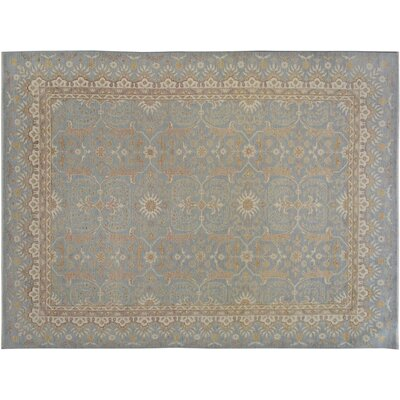 Xenos Hand-Knotted Rectangle Wool Blue/Ivory Area Rug