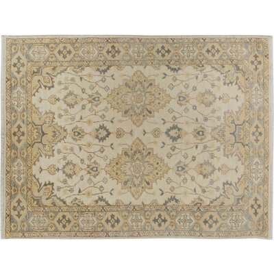 Xenos Traditional Hand-Knotted Wool Ivory/Gray Area Rug