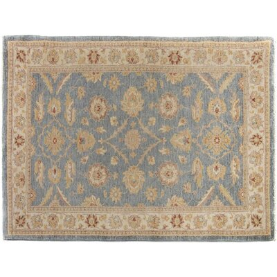 Xenos Hand-Knotted Rectangle Wool Gray/Tan Area Rug