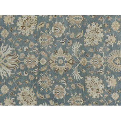 Xenos Transitional Hand-Knotted Rectangle Wool Gray/Ivory Area Rug