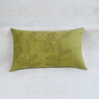 Gayagoy Boudoir Decorative 100% Cotton Pillow Cover Color: Green